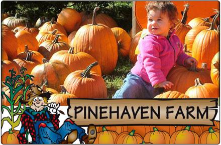 pinehaven farm wyoming mn