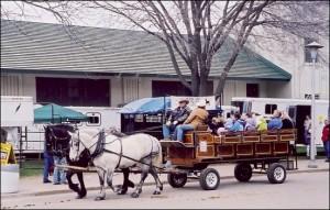 Horse expo 1