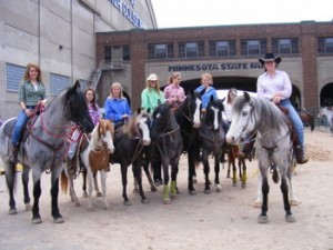 Horse expo 2
