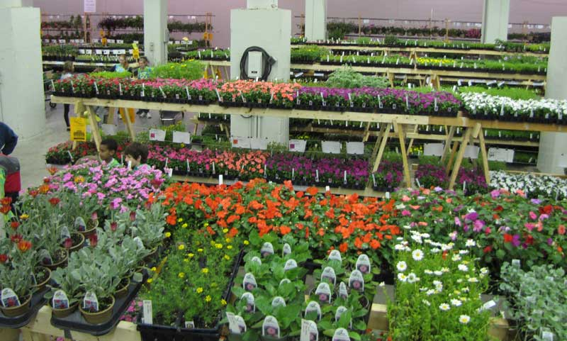 friends school plant sale state fairgrounds may 8 10
