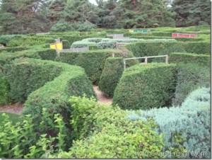 arboretum maze