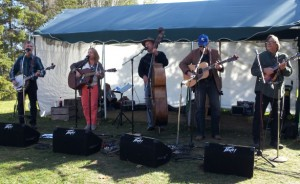 Blue Groove Bluegrass Band tonight at Como Park Lakeside Pavilion