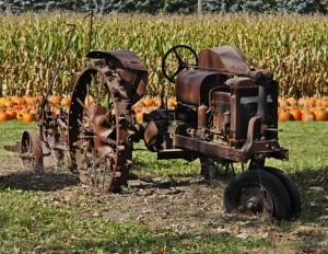 Lone Oak Days at Holz Farm