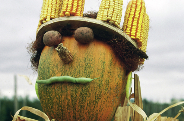 scarecrow with corn cob crown
