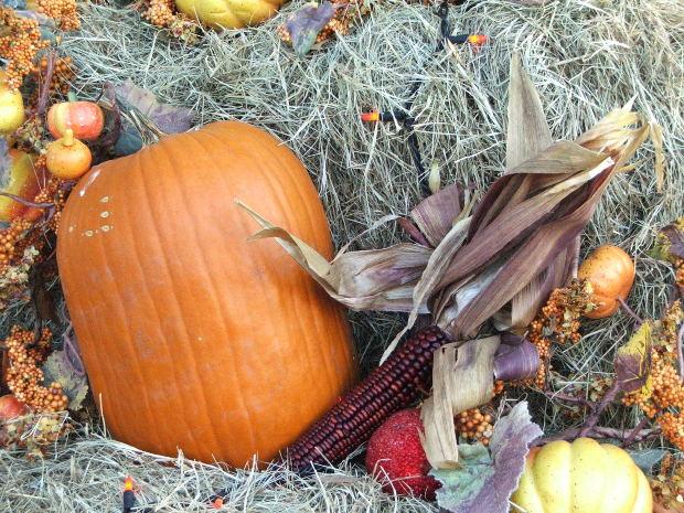 lone-oak-days-fall-festival