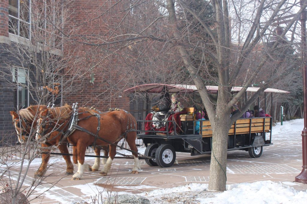 Winter Ice Festival - Centennial Lakes Park