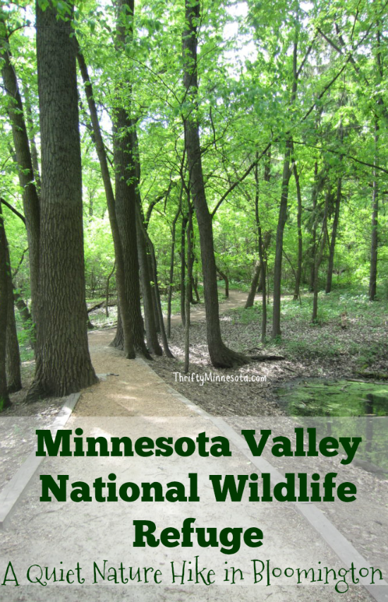 A Quiet Nature Hike in Bloomington- Minnesota Valley National Wildlife Refuge