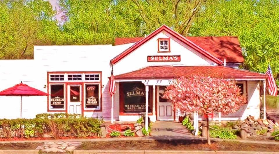 Selma's Ice Cream Afton, Minnesota