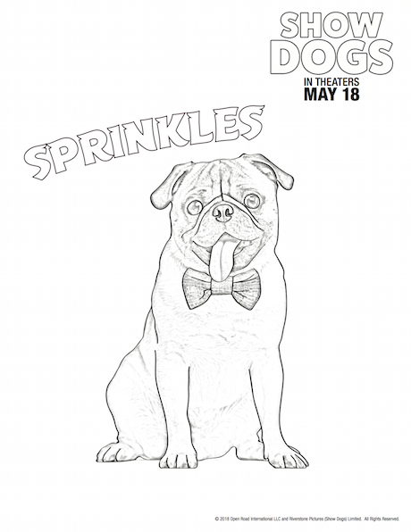 Show Dogs Coloring Sheet