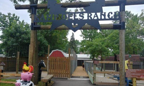Kamp Dels Petting Zoo