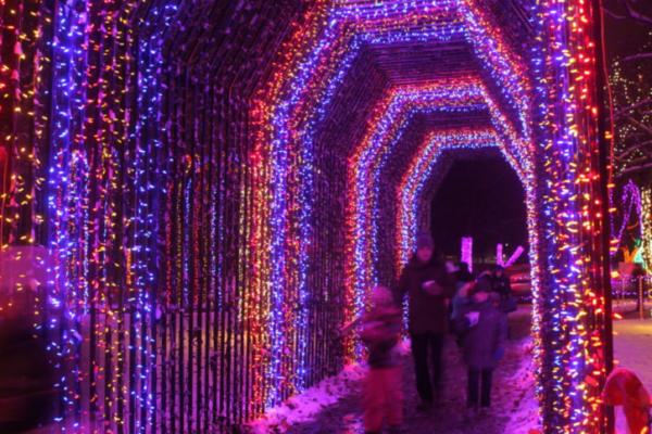 Kiwanis Holiday Lights | Mankato (Sibley Park)