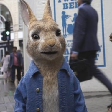 Peter Rabbit The Runaway