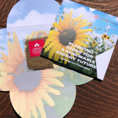 free pack of pollinator-friendly seeds from xcel energy