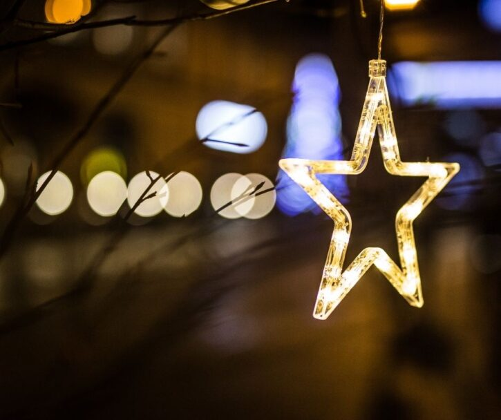 MN Holiday Lights Display - White Star on Branch