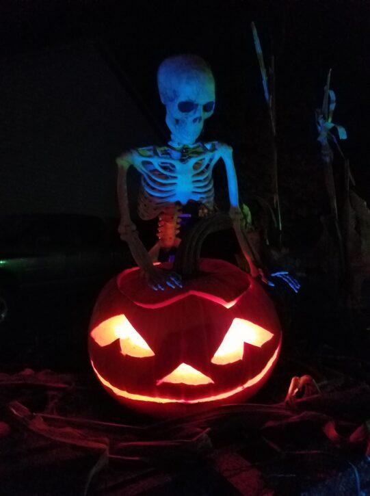 skeleton holding jack-o-lantern