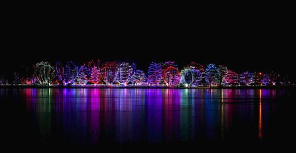 Holiday Lights in Motion | Sleepy Eye (Sportsman's Park)