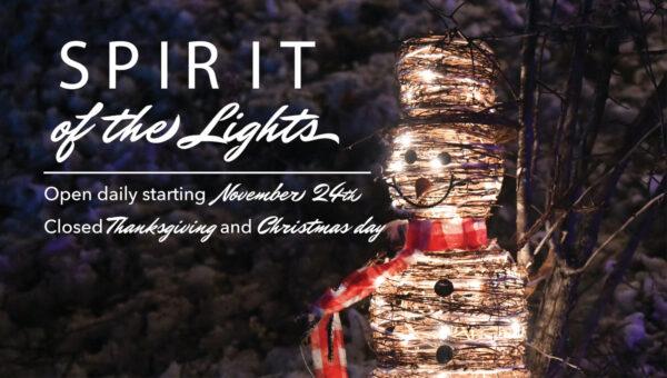 Spirit of the Lights | Duluth (Glensheen Mansion)