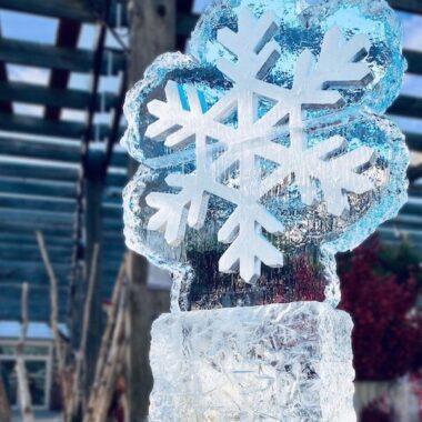 Ice Sculpture Exploration