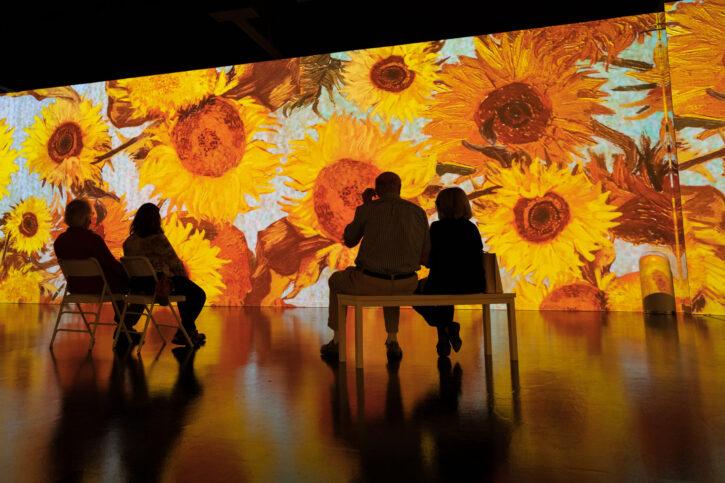 Immersive Van Gogh Exhibit comes to Minneapolis