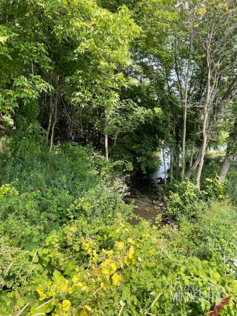 Luce Line Trail at Schaper Park