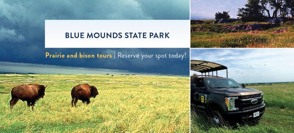 Blue Mounds State Park Bison Tour